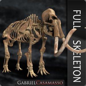 3D complete mammoth skeleton skull