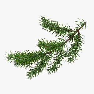 3D fir branch model