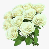rose bouquet 11 3D