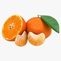 realistic tangerine 3D