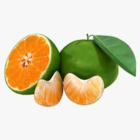 realistic green tangerine 3D model