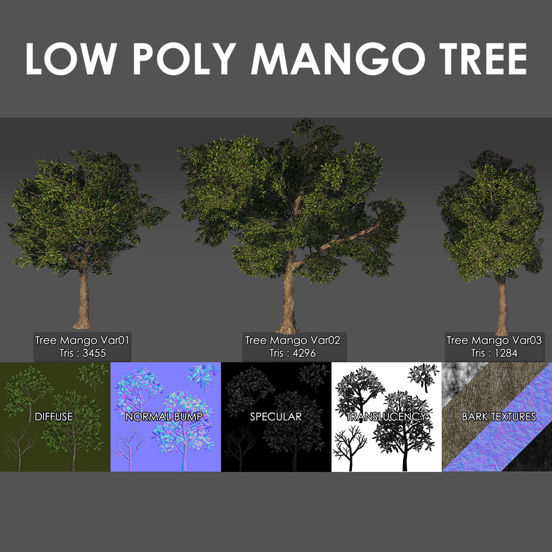 3D mango tree pack model