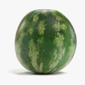 3D model melon watermelon