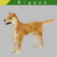 akita dog rigged model
