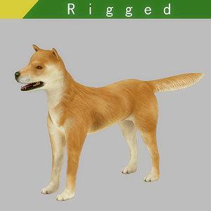 akita dog rigged model