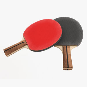 tennis paddle table 3D model