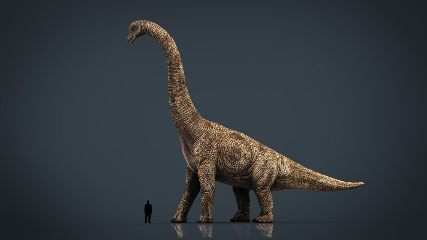 3D realistic brachiosaurus