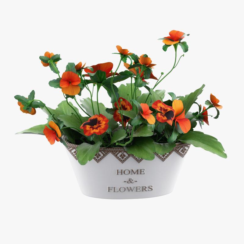 plant pot model