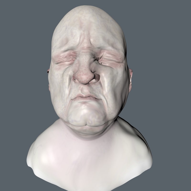 3D head painted polys model