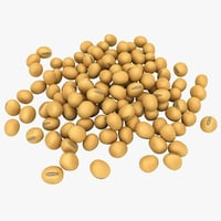 realistic soybean pose 2 3D model