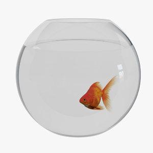 goldfish aquarium 3D