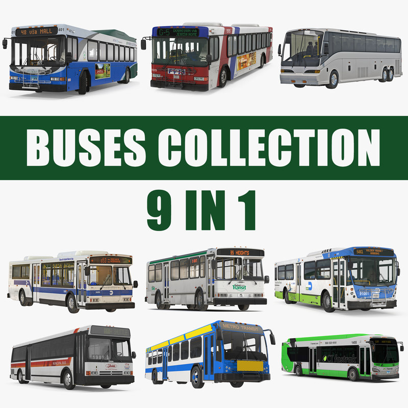 3D buses 7 bus