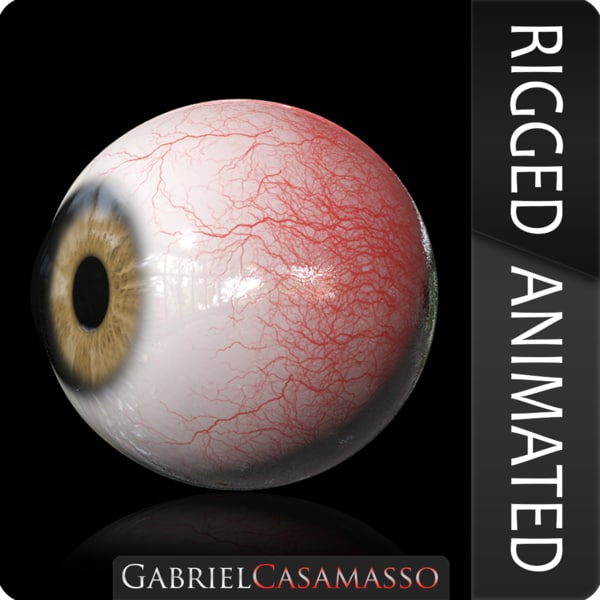 realistic eye model