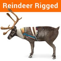 Reindeer rigged model