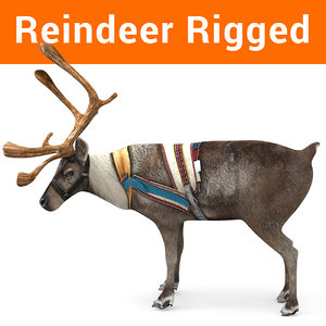 reindeer rigged deer 3D