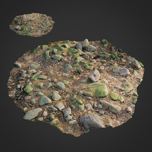 scanned nature stone 017 3D model