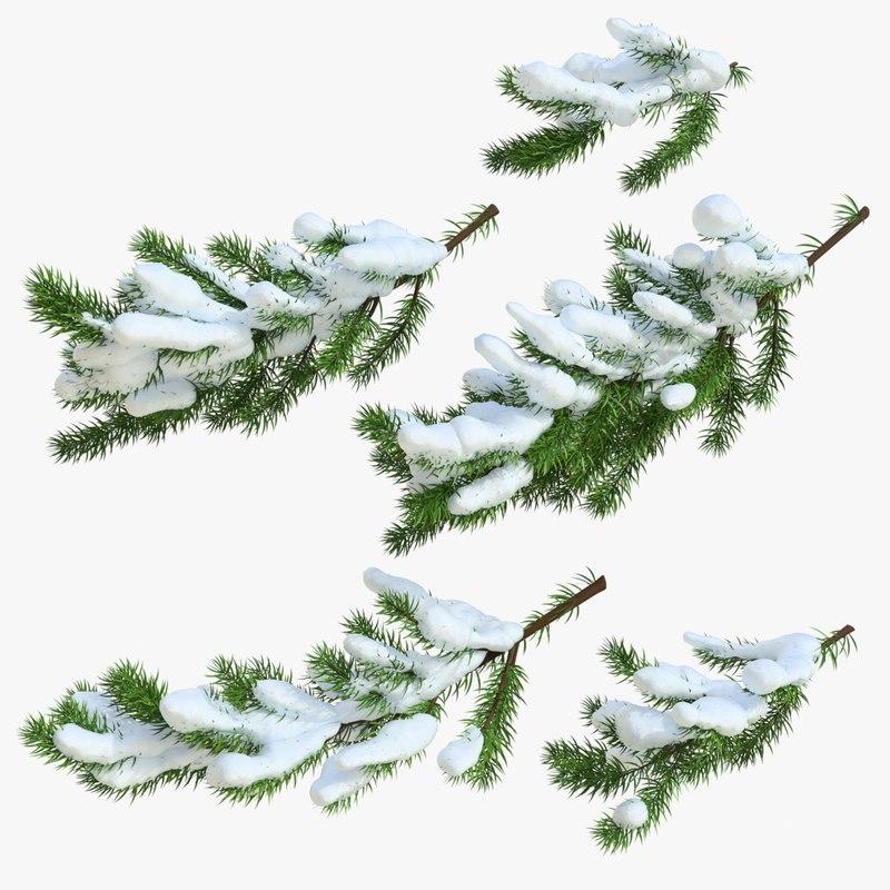 christmas fir branches model