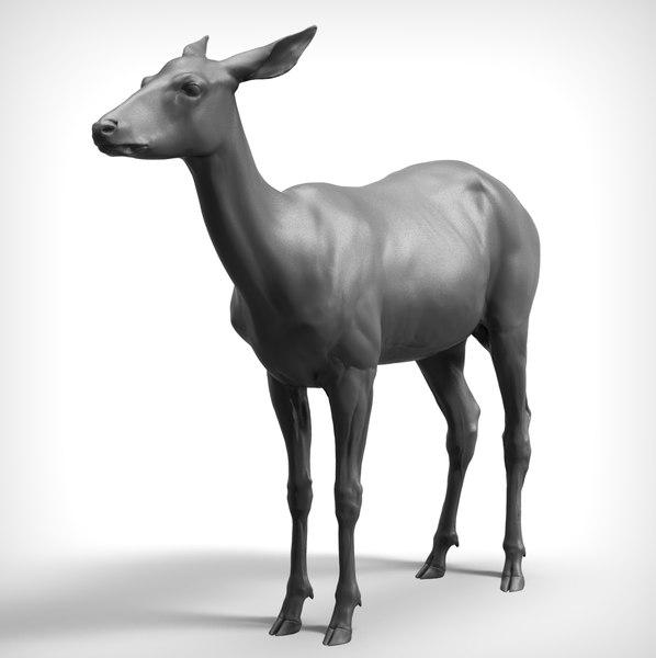 3D deer realistic model