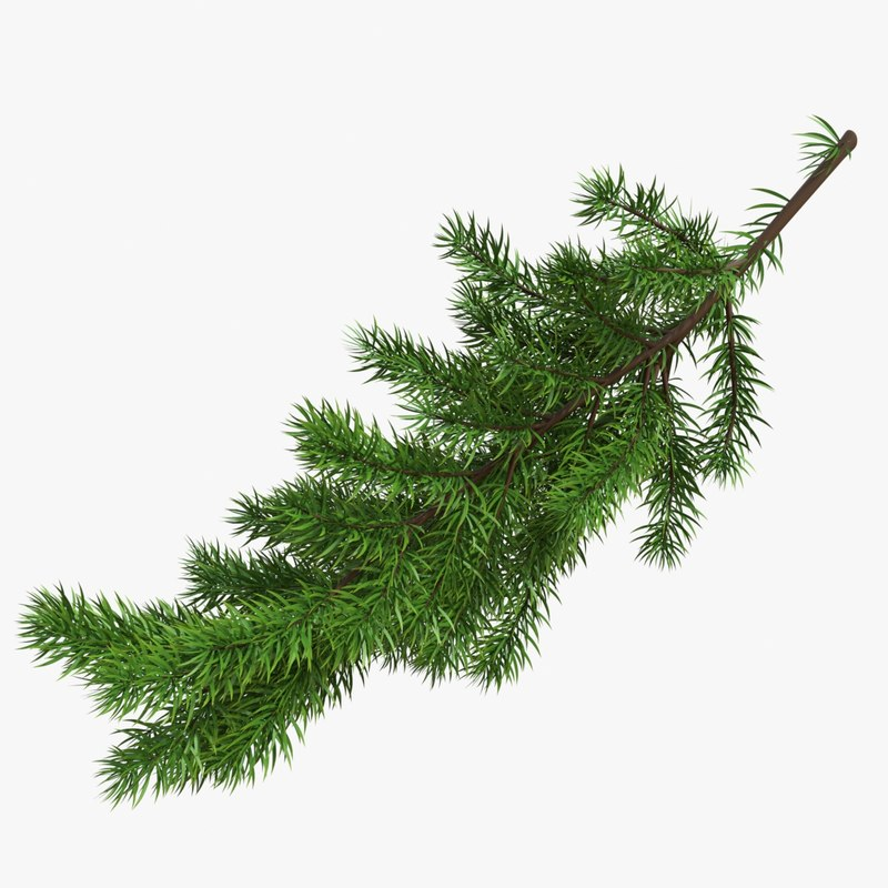 3D christmas branches