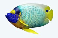 3D angle fish 16 model