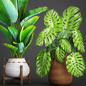 3D plants basket rattan