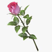 rose v9 model