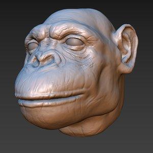 chimpanzee head 3D