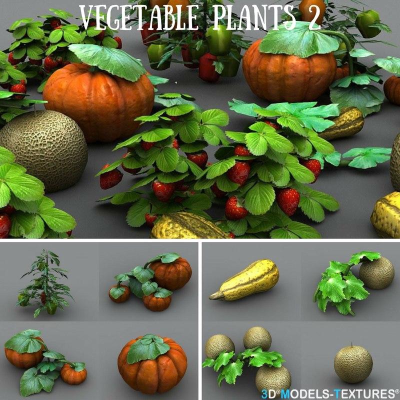 3D vegetable plants