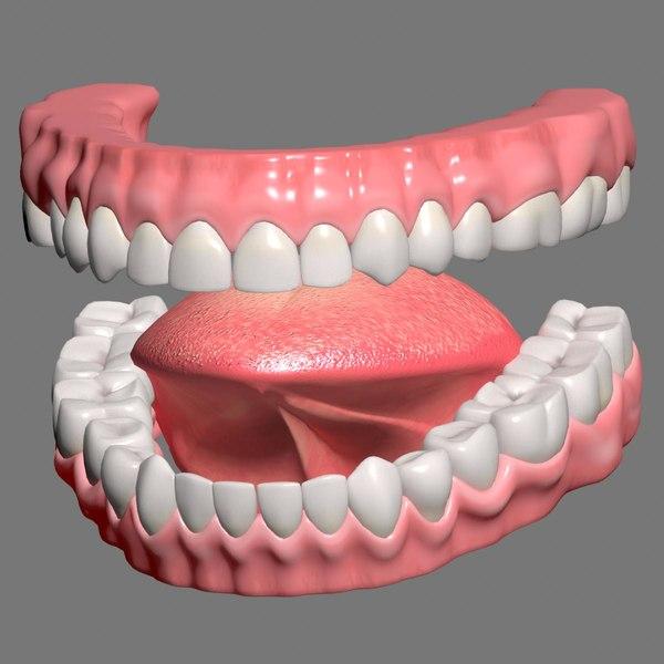3D mouth gums teeth