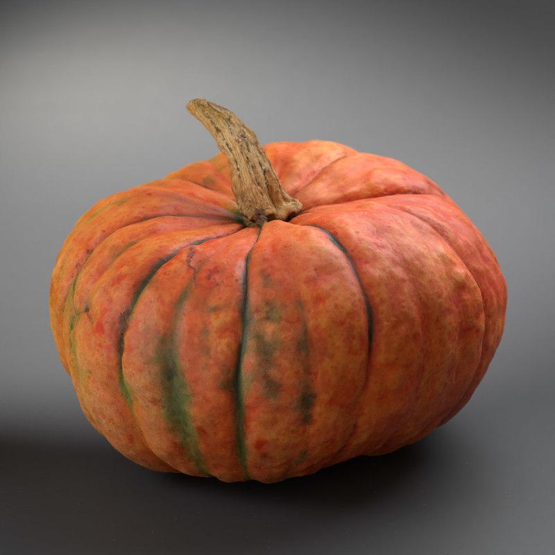 pumpkin winter squash 3D model