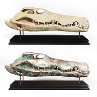 3D model crocodile skull