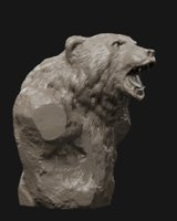 Bear Grin Bust 3D print model