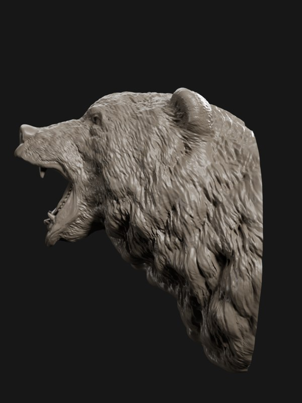 bear head grin 3D model