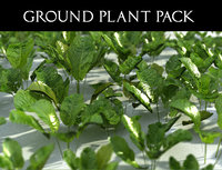 3D ground plant pack