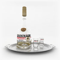 goldschlager set gold 3D model
