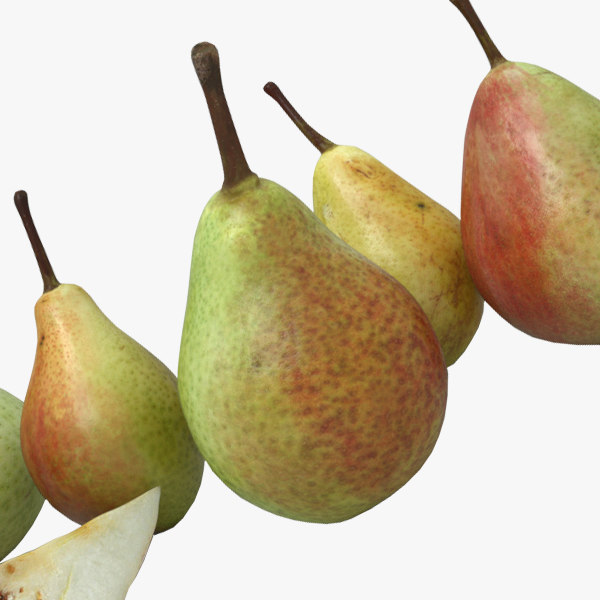 3D model pears cycles