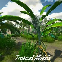 Tropical Models