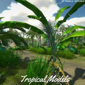 3D tropical
