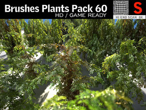 3D brushes plants pack 60