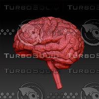 3d_Brain_Model