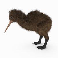 kiwi bird fur 3D