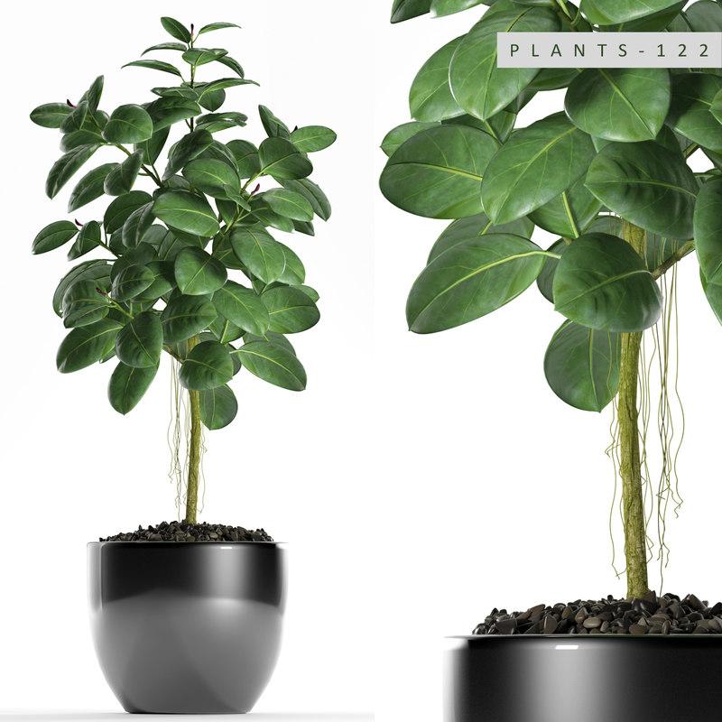 plants 122 rubber 3D model