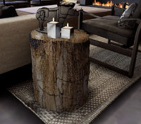3D petrified wood end table model