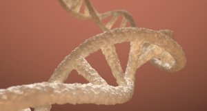 dna double helix blender 3D model