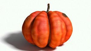 fruit vegetable model