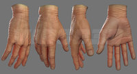 realistic man hand source 3D model