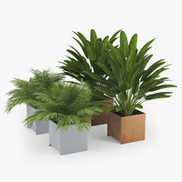 Planterworx TRUE SQUARE Tropical