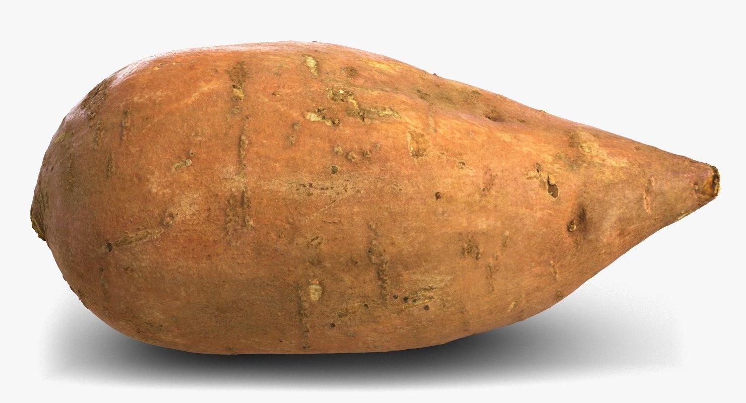 3D sweet potato batat model