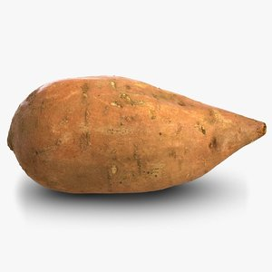 3D sweet potato batat model
