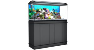 aquarium aqua mo 3D